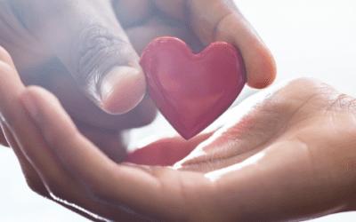 Corporate Donor Love